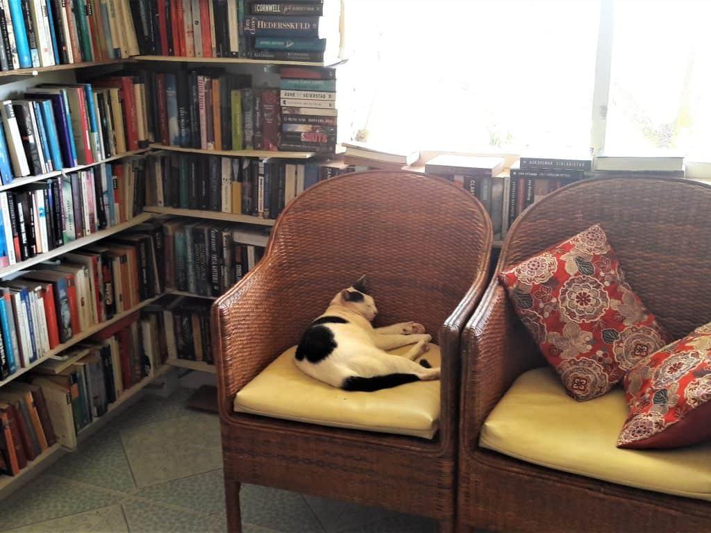 phuket used bookshop ao yon